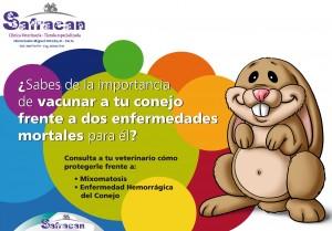 Safracan_Vacuna_conejos