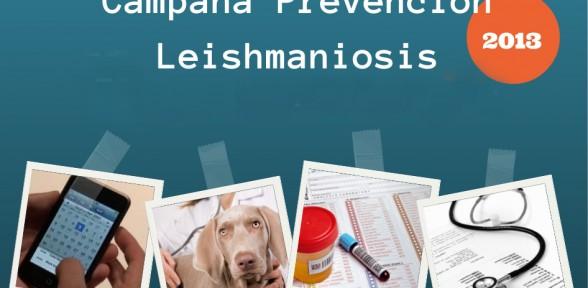 campaña 2013 de detección precoz de leishmaniosis