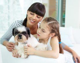"""""""Animales de compañía y su bienestar: por ellos y por nosotros"""""""