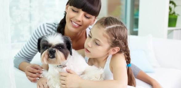 """Evento: """"Animales de compañía y su bienestar: por ellos y por nosotros"""""""
